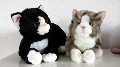 Mika und Kleo