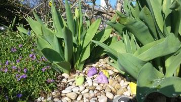 Schnecken und Tulpen